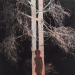 Silver Birch, 2006, Oil on canvas, 122 x 122cm